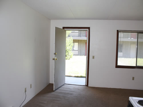 One-bedroom at The Laurel, 1585 Turner Drive, apt.10, Pullman Wa 99163