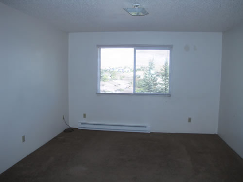 A one-bedroom at The Cougar Apartments, 205 Larry, #9, Pullman WA 99163
